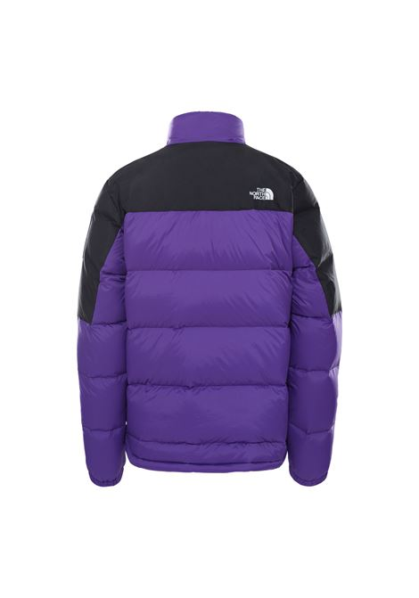 m diablo down  THE NORTH FACE | Giubbini | NFOA4M9J-S961