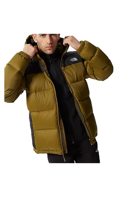 THE NORTH FACE | Jackets | NFOA4M9L-5TU1