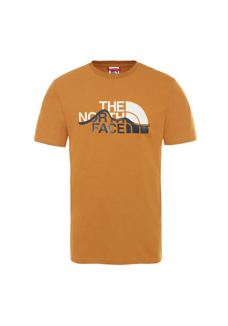 m s/s mountain line tee  THE NORTH FACE | T-shirt | NFOOA3G2-VC71