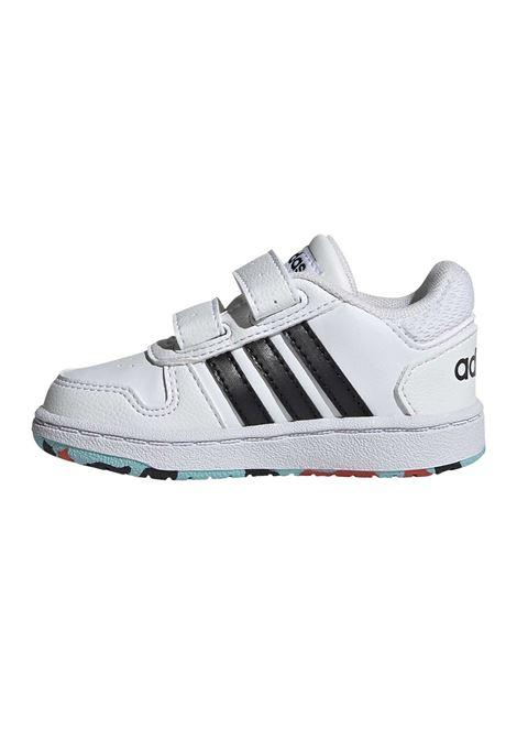ADIDAS CORE | Sneakers | HO1551-