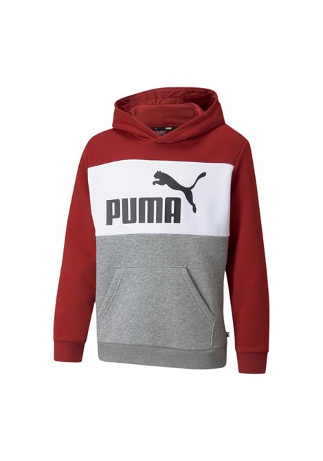 PUMA | Felpe | 846128-22
