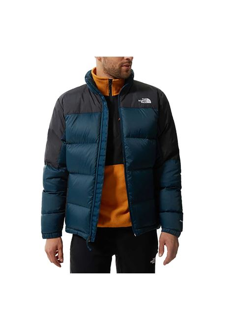THE NORTH FACE | Jackets | NF0A4M9J-S2X1