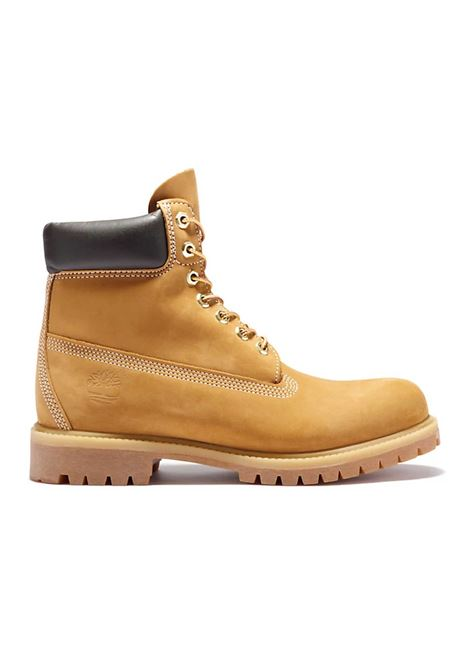 TIMBERLAND   Sneakers   TB0A10061-7131