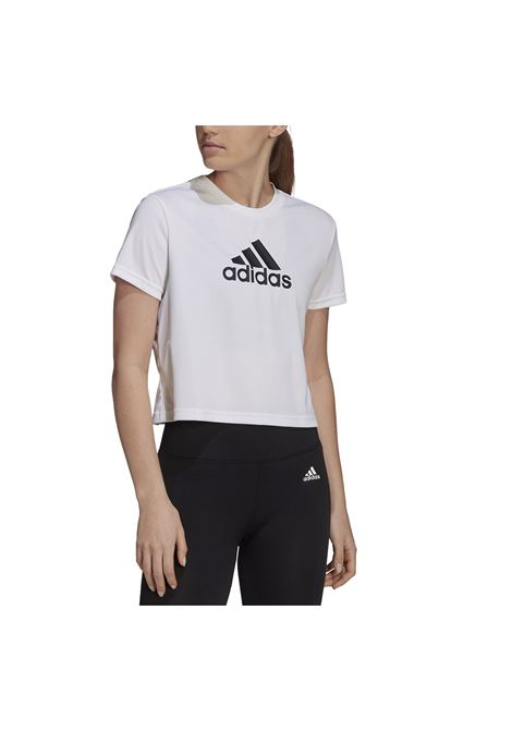 ADIDAS CORE | T-shirt | GM7196-