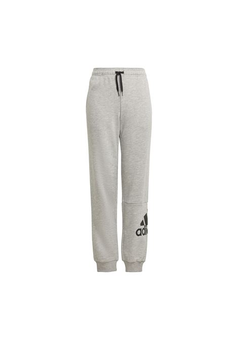 ADIDAS CORE | Pants | GN4016-