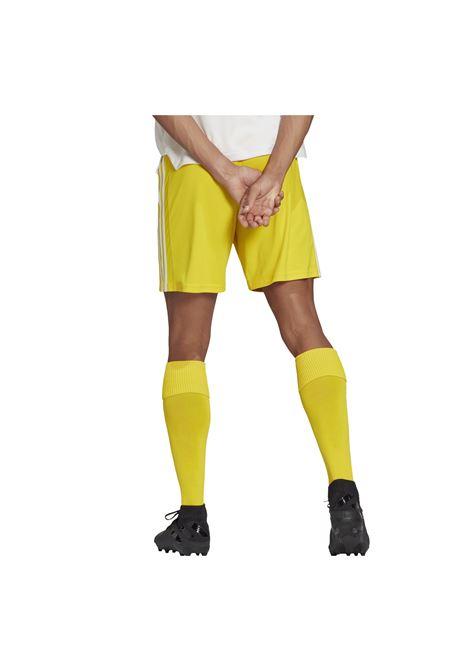 SQUAD 21 shorts ADIDAS CORE | Shorts calcio | GN5772-