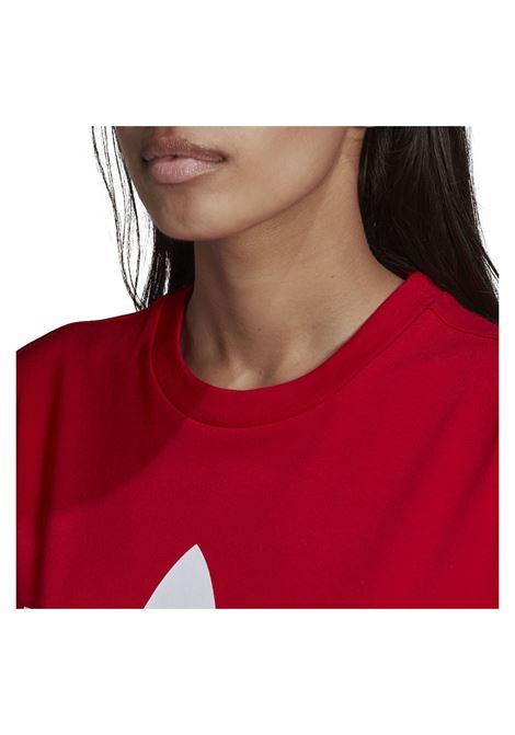 trefoil tee ADIDAS ORIGINAL | T-shirt | GN2902-