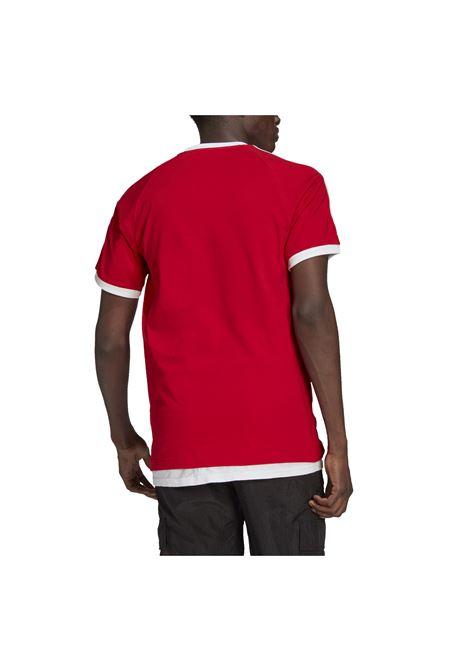 ADIDAS ORIGINAL | T-shirt | GN3502-