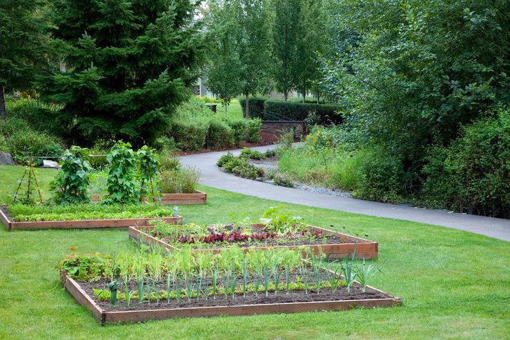 Cedarbrook lodge vegtable garden hpg