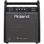 Roland Personal Monitor Amplifier (PM100) Alternate Picture