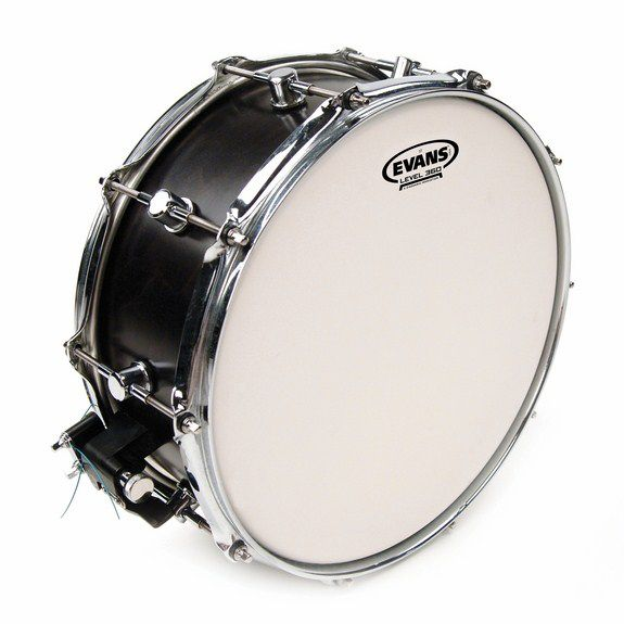 evans st snare drum head snare drum heads tom heads steve weiss music. Black Bedroom Furniture Sets. Home Design Ideas