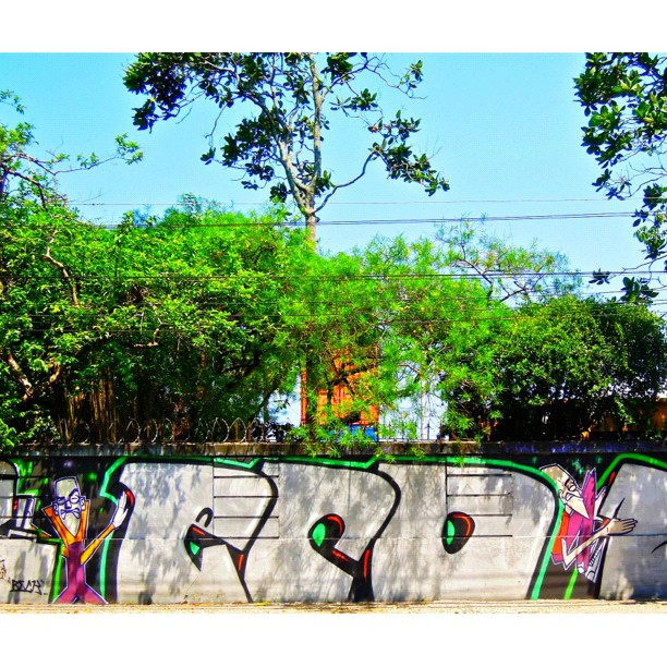 Jockey Club's Wall: When in Rio and if you like Grafite you must see this wall