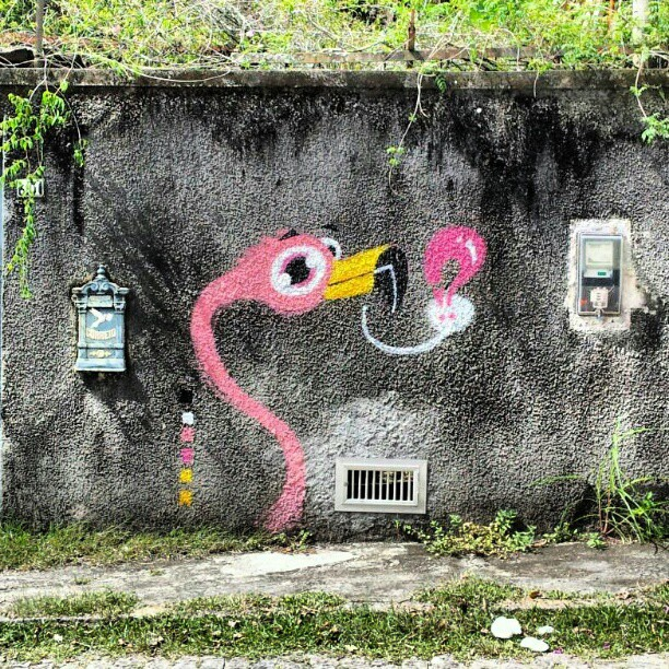 Welcome to Miami! #instagrafite #graffiti #aulaseco #sabadodemanhacrew #flamingo #!?