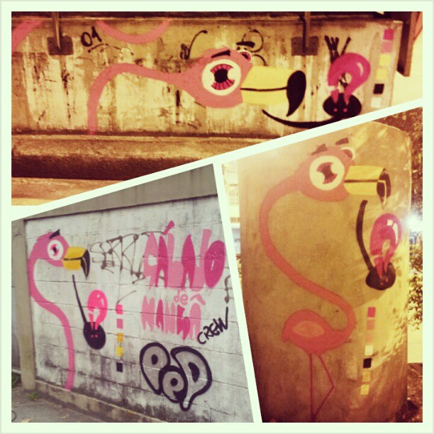 Resumo do fim de semana. #graffiti #sabadodemanhacrew #rafa #flamingo #rosa #pink #tijuca