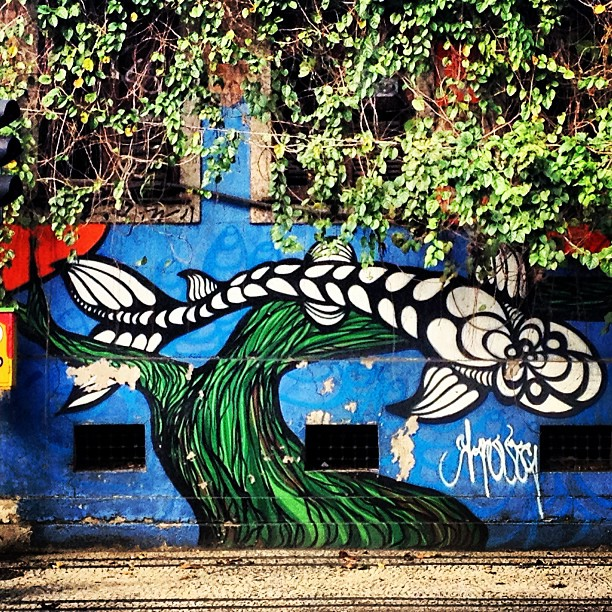 Carpa japonesa. #grafite #graffrio #murosdorio #artelivre