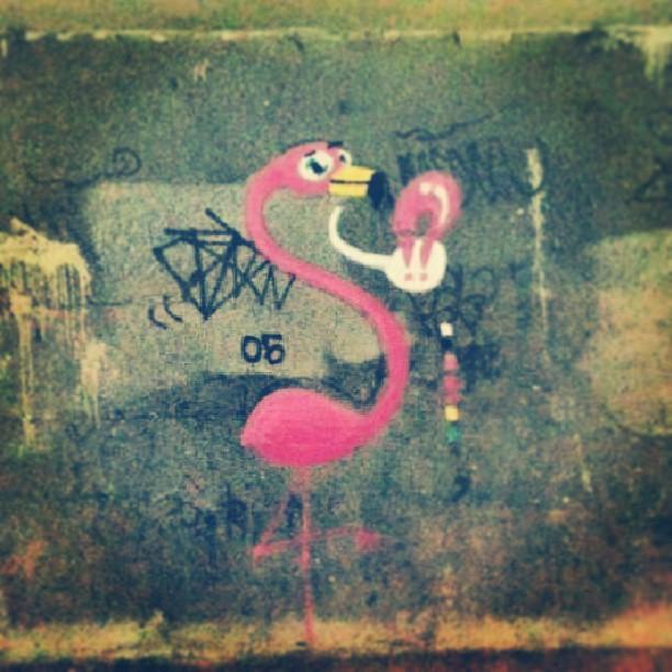 Depois desse tempo parado, de volta a ativa. #flamingo #rafa #sabadodemanhacrew #graffiti #graffrio #flamenco #laranjeiras #rosa