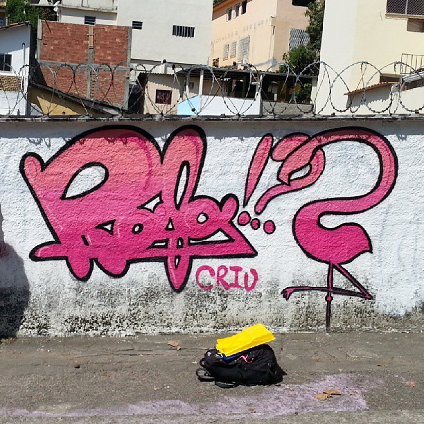 #rafa #graffrio #graffiti #grafite #rosa #pink #flamenco #flamingo #streetartrio #grajau