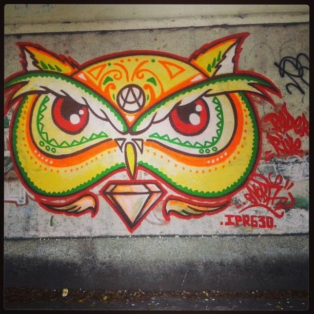 A cara da Coruja. #nobã #artistasurbanoscrew #meusrolés #630 #ipr #instagraffiti #graffitirj #penharj #streetartrio