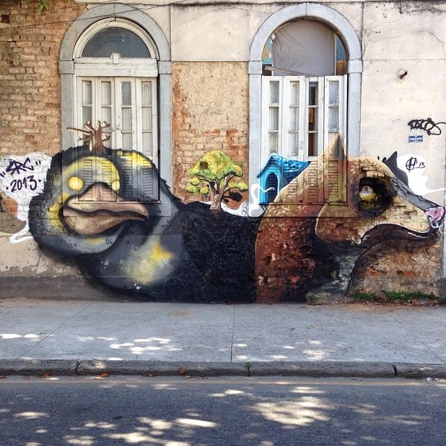 Duplicidade! Pintura feita hoje com o amigo e monstro @heitorcorrea64 na esquina da rua maxwell com Gonzaga bastos.  tamo junto! #graffiti #graff #art #streetart #streetartrio #urbanart #urban #urbanstyle #animals #duplicidade #src #searc #hec #heitorcorrea #zonanorte #northzone #house #nature #rj #brasil