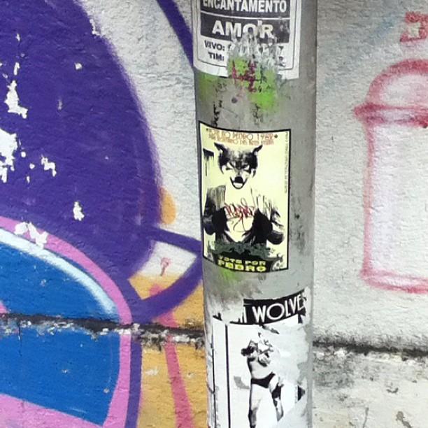 Ran into a #wolves #sticker I put up last year in #Rio clinging on for life so decided to add my 2013 #voteforpedro #lobo sticker on top of it. #slaps #stickers #graffiti #streetart #streetartrio #parquelage #brazil #brasil #stickerart #urbanart #art #petervanflores