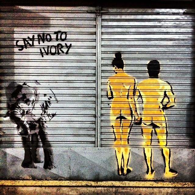 Stop elephant abuse  #streetartrio #artruario
