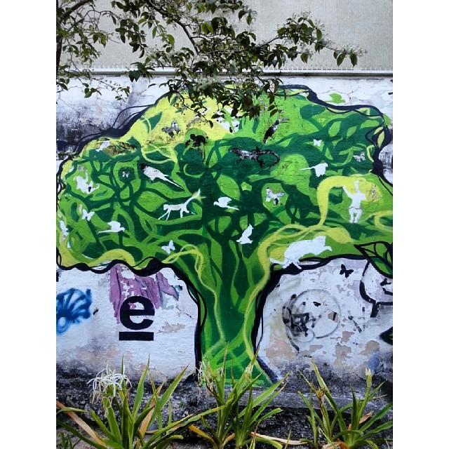 #streetarteverywhere #streetartbrasil #streetart #streetartist #streetartrio #artederua #artenomuro #arturbain #grafittart #grafiterio