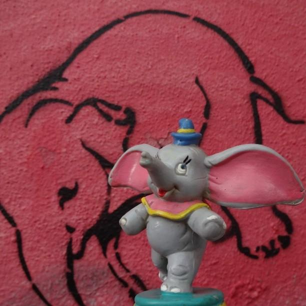 Dumbo sees hallucinations of pink elephants... #dumbo #magicfeather #icanfly #flyingelephant #disney #fleck #deliriumbeer #pinkelephant #stencilgraffiti #urbanart #streetart #artederua #arteurbana #streetartrio #riostreetart #riodejaneiro