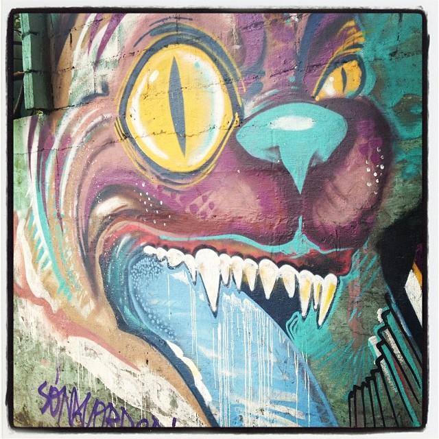 Eu sou o lobo mau, lobo mau, lobo mau #sónacorrerria #grafite #graffrio #murosdorio #artelivre