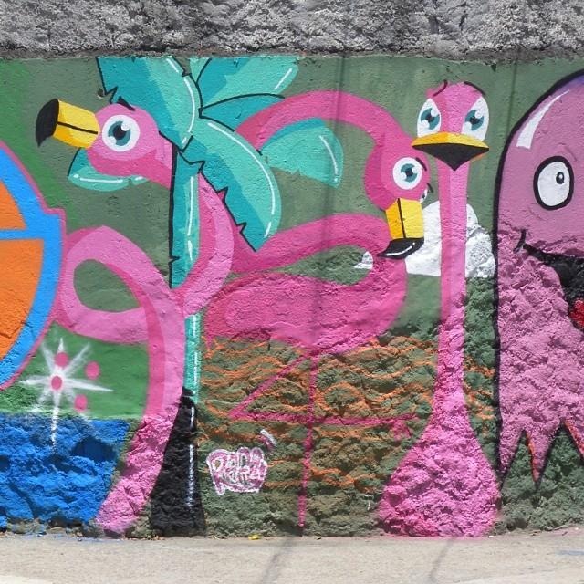 Não é porque eu fiz não, mas ta bonito. #flamingo #rafa #rosa #vilaisabel #tijuca #streetartrio #grafite #graffiti #grafrio