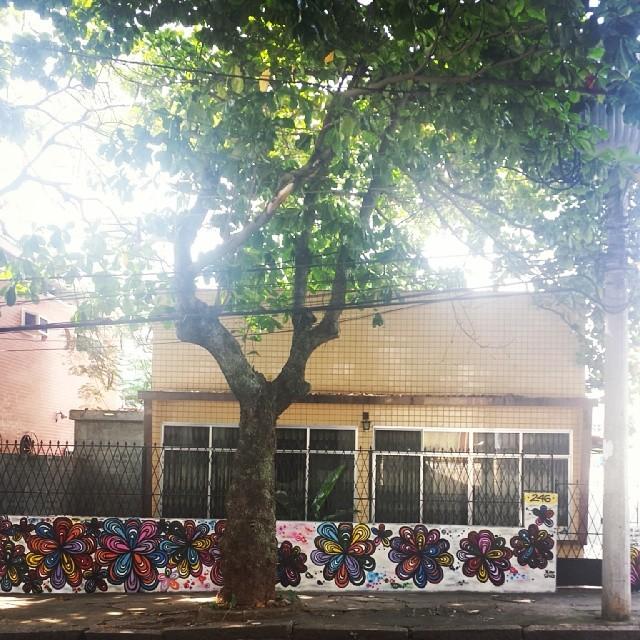 Para quem gosta de Flor..Esse muro está um prato cheio..rsrs E o q importa é o cliente satisfeiro! o/ #ilhadogovernador #errejota #flowers #flor #arteurbana #graffiti #graffitiwork #StreetArtRio #graffitigils #graffiteiras #rj #colorgin #decor #decoracao