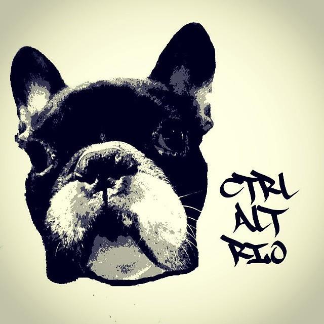 Em breve, numa rua perto de você! Valeu @rezistencilart #riodejaneiro #ctrlaltrio #caobento #frenchbulldog #streetartrio #rj #urbanartsrj
