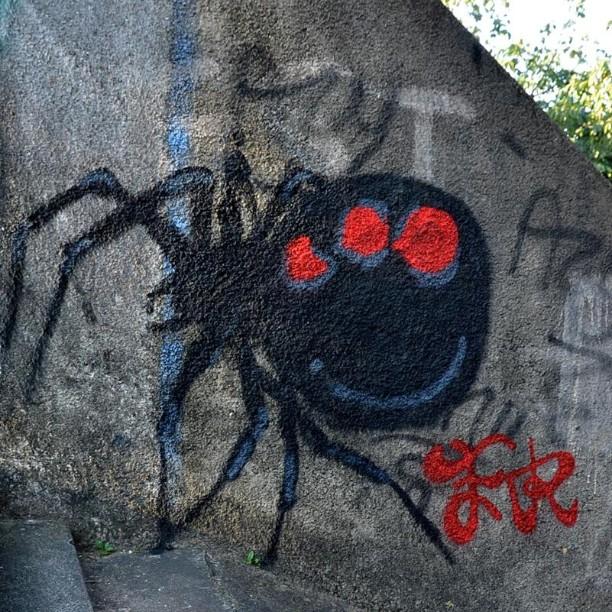 Viúva Negra #fr #grafitti #vvp #spider #artederua #streetart #grafite #urbanart #arteurbana