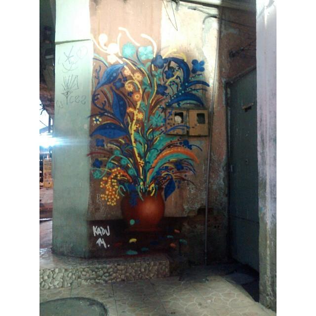 #kaduori #streetartrio #streetart #graffiti #grafite #arteurbana #urbanart #instagrafite #rua #xarpi #flores #collors #cores #art #arte #paint #culturaderua #instaart