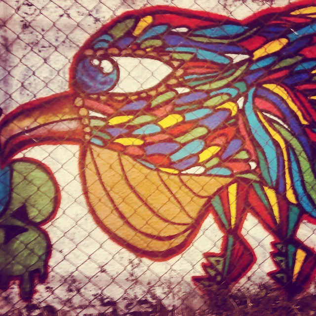 color bird #streetartrio #streetart #graffiti #339
