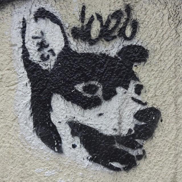 Stencil art in Rio. #stencilart #stencil #riostreetart #streetartrio #sprayart #urbanart #arteurbana #streetart #artederua #riodejaneiro