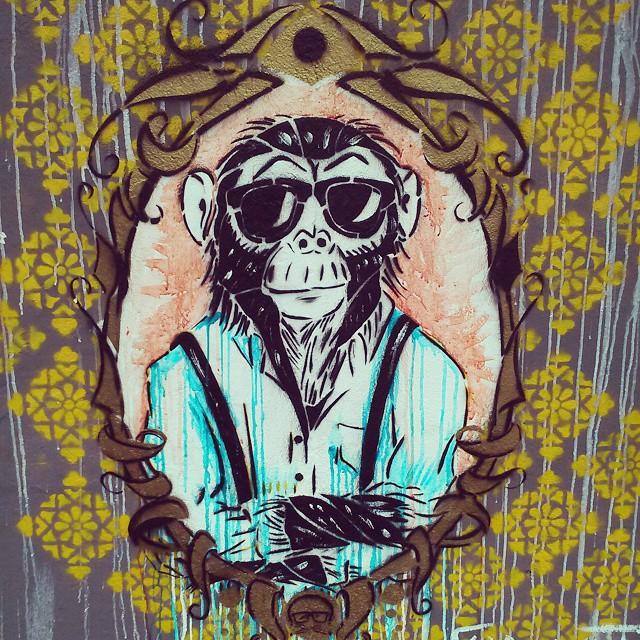 classy monkey #garavato #colombia #streetart #streetartrio #graffiti #RJ #art