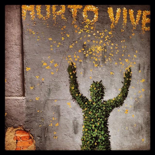 Horto lives. #mural #graffiti #grafite #streetartrio #streetart #horto #protest #riodejaneiro #jardimbotanico #protestart #leaves #urbanart