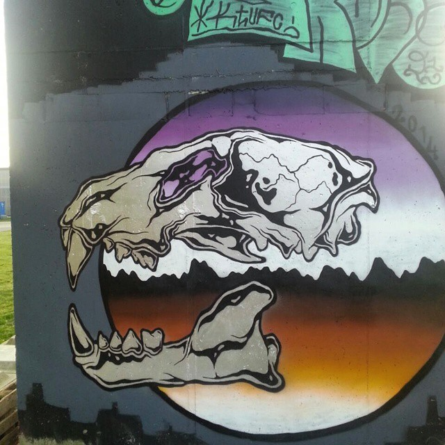 #dutchstreetart #dutchgraffiti #streetgraff #streethaveeyes #klotter #arteverywhere #graff #graffiti #streetart #publicart #paintingwalls #cityart #citystreetart #loveart #graffiti_aroundtheworld #graffitiwork #graffbex #skull #muralart #modernart #streetartutopia #streetartrio #streetartandgraffiti #streetculture #streetartofficial #instagraffiti #instagrafite #ilovegraffiti