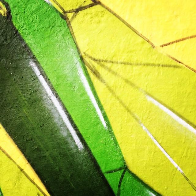 #tick #streetart #streetartrio #spray #green #graffiti #graffitiart #detail #detalhe