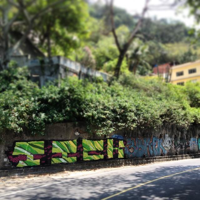 #tick #streetart #streetartrio #streetartoficial #graffiti #green #rua #jungle #junglegraffit #riodejaneiro #sol #sun #colors #calor #spray #spraycan #mural #muralart #94 #mtn #mtn94 #montanacans