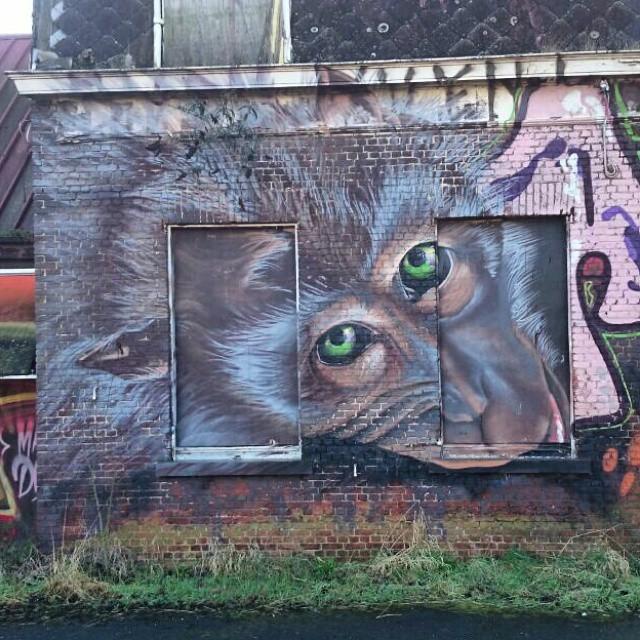 #instagraffiti #grafiteros #globalstreetart #thisisstreetart #monkey #character #streetartrio #streetart #graffiti_aroundtheworld #klotter #spraydaily #wallart #paintingwalls #publicart #cityart #citystreetart #urbanart #urbanwalls #urbex #muralart #arteverywhere #streethaveeyes #fromthestreets #instastreetart