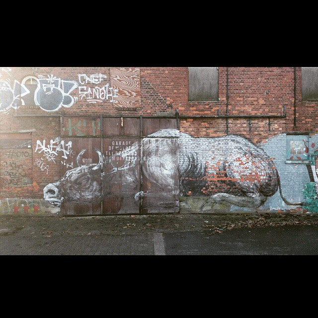 #instastreetart #buildingart #streetart #streetartrio #streetgraff #graffiti #graff #fromthestreets #publicart #klotter #klotterkultur #streethaveeyes #streetartutopia #thisisstreetart #globalstreetart #wallart #graffitieverywhere #graffiti_aroundtheworld #spraydaily #sprayart #urbanwalls #urbanart #hierendaar #notjustwalls #muralsonthewall