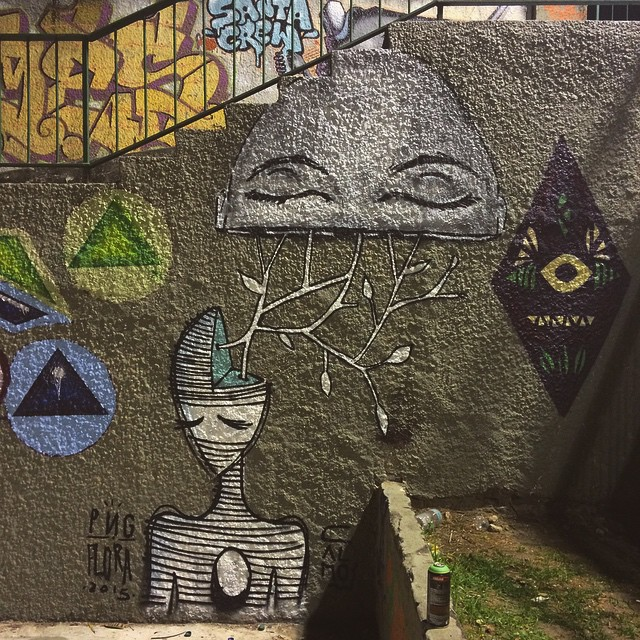 para fechar um ótimo dia  • Com @umaflora • Santa Teresa - RJ #streetartrio #pngone #rjvandal #coletivocalmo
