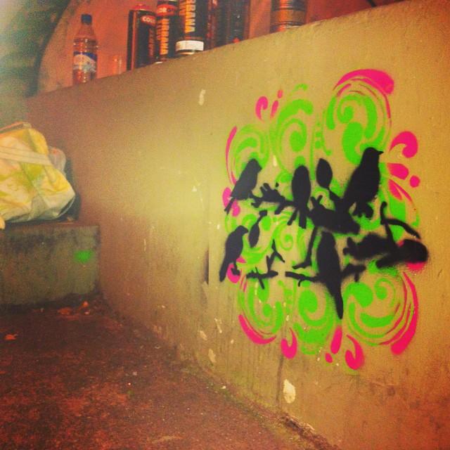 Birds #StreetArtRio #stencil #stencilartrio #graffiti #urbanart #instagraffiti #instastencil #rio #tijuca