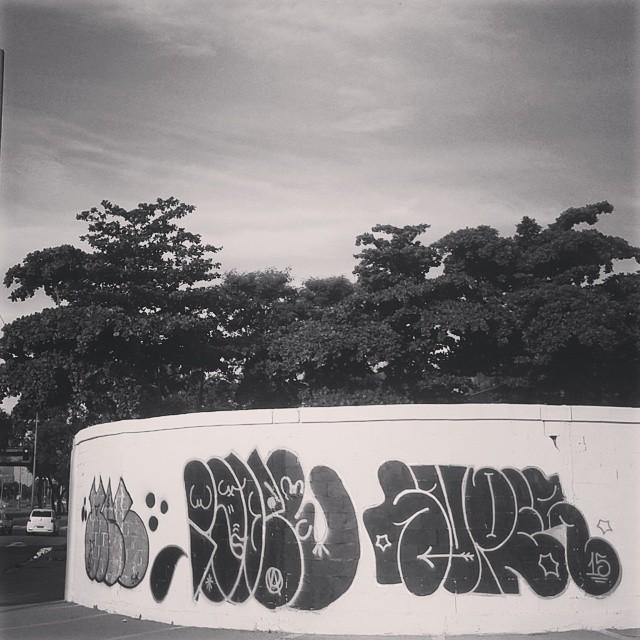 Finalizando os trabalhos de domingo. Dia de semana tem mais. #graffitirj #artistasurbanoscrew #estiloriginal #tagsandthrows #welovebombing #aucrew #streetartrio #vandal #graffitivandal #bombingbrasil #rjvandal