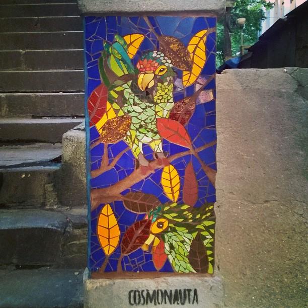 I spotted this little gem in Saúde, not fat from Pedra do Sal. #rio #mosaic #tileart #birds #parrot #streetart #streetartrio