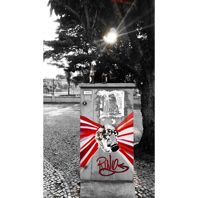 #streetart #streetproject #streetartrio #graffit #Brasil #rino #art #sun