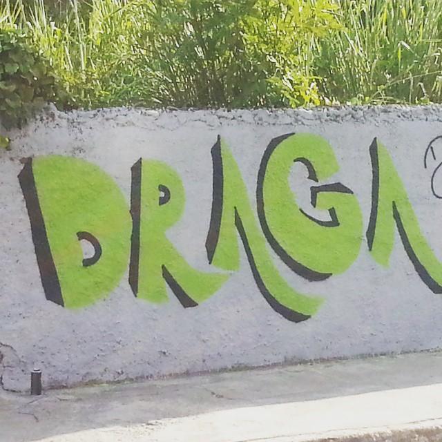 #Cérebro #zumbi #cactus #arte #art #streetartrj #spray #rua #free #overdrivesarava #graffiti #street #s #streetartrio #jet #game #wall #planta #plan #life #plano #xarpi #tinta #helldejaneiro #streetartrio #cartoon #cartoons #pintura #streetart #arteurbana