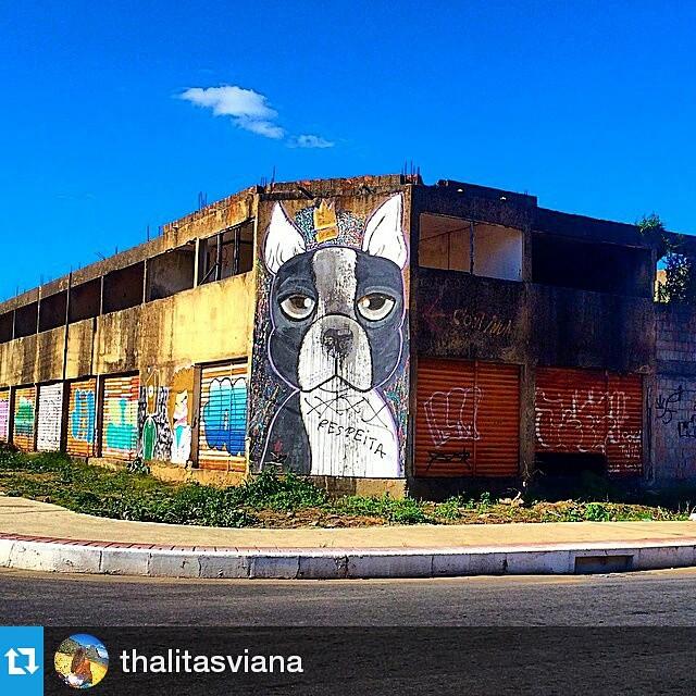 Foto por @thalitasviana ・・・ Olhe os muros, valorize a arte, fortaleça o movimento. Use #CamposStreetArt ・・・ Crédito ao artista: é o artista ou conhece quem fez a arte? Comenta ai! ・・・ # Arte #Graffiti #streetart #artederua #artenarua #olheosmuros #asruasfalam #graffitiart #instagraffiti #streetarteverywhere #streetartphotography #streetartrio #streetartist #streetartbrazil #graffitilifestyle #graffitiart #tintanaparede #camposdosgoytacazes #RJ