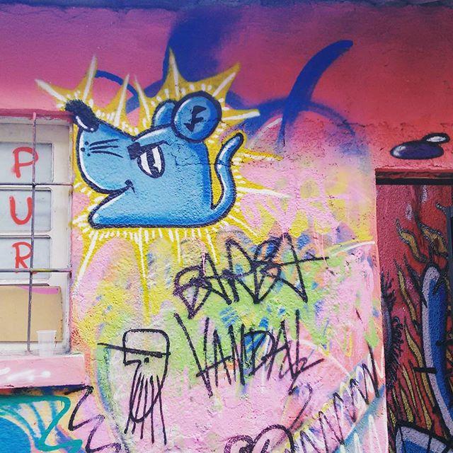 Graffiti ! #graffiti #graffitiart #art #artist #vandals #streetstyle #streetartist #StreetArtRio #cultura #niteroi #nikitycity #puroskateshop #flowers #artwork #instagraffiti #artwall #colors #riodejaneiroinstagram